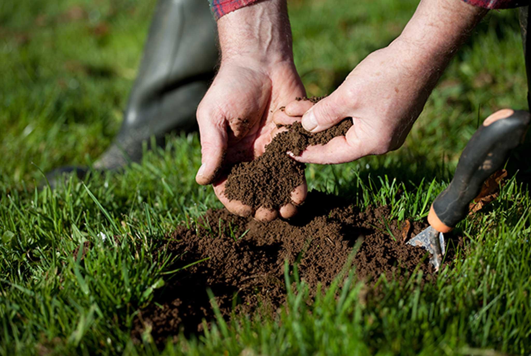 Soil Test Blog Post