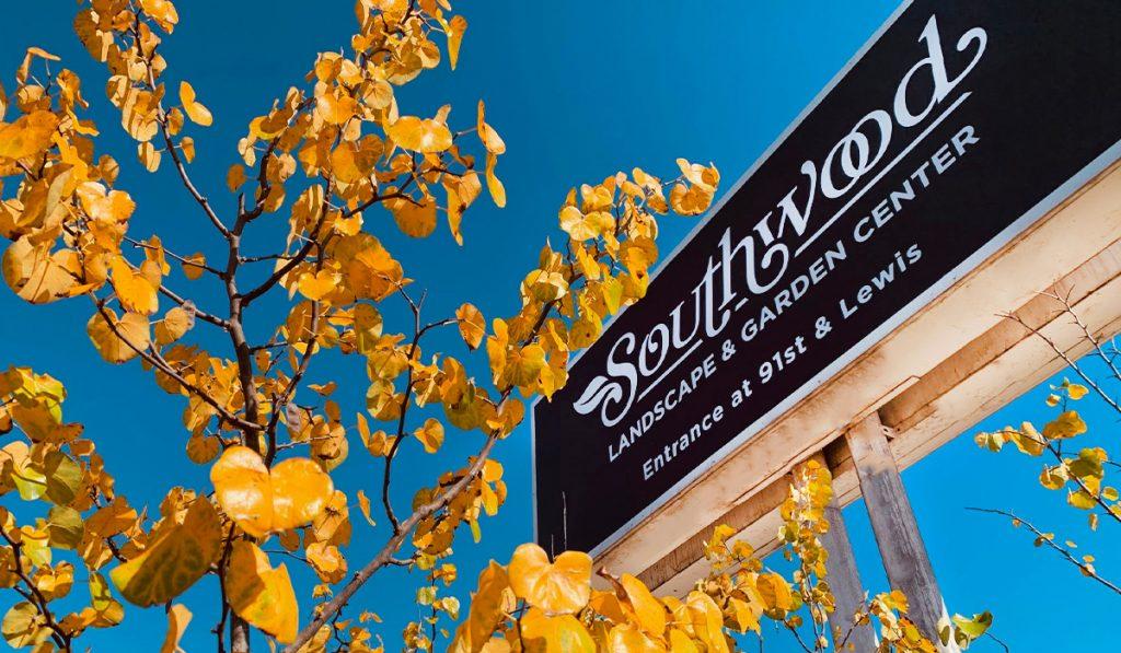 Fall Foliage_WEB_NOV2020