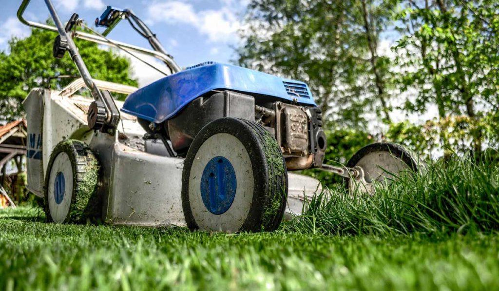 Lawn-Care-Etiquette_WEB_AUG2021